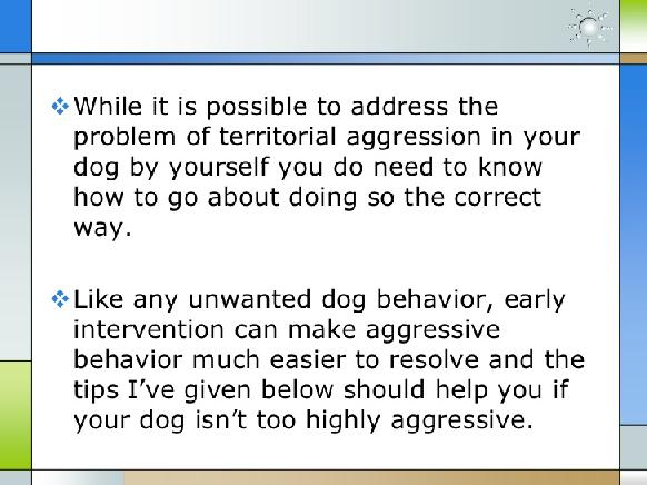 how to stop territorial behavior in dogs